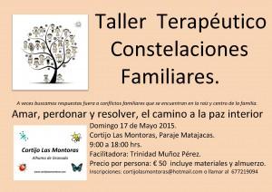 Constelaciones Familiares - Taller Terapéutico